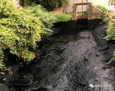 湘潭市部分黑臭水体整治避重就轻 不严
