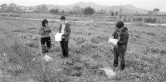把脉土壤健康 为精准治污提供数据支撑
