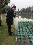 安徽省副省长来芜湖督导环境突出问题