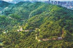 中国人民大学王洪臣:进水超标导致出水超标,相关方应