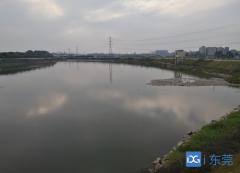 东莞累计完成入河排污口整治超17000个