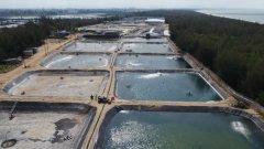 海洋大省:公益诉讼破解海洋生态环境