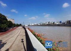 流域水质持续改善,东莞市茅洲河1-11