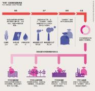 塑料污染解决方案,真真假假如何辩?