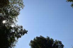 庄国泰:守护蓝色星球 共建绿色家园