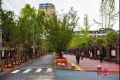 2021年,成都再建1000条社区绿道