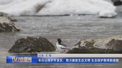 长白山保护开发区:致力建设生态文明 生态保护取得新
