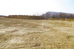 郑州荥阳市两处林地间大面积黄土裸露