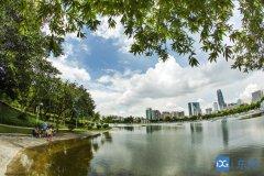 """东莞市环境卫生整治提升""""硬十条""""出"""