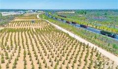 榆林市四大区域生态治理示范模式