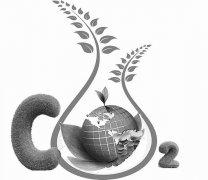"""碳中和时间紧任务重 专家热议能源转型""""药方"""""""