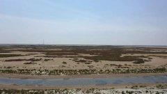 辽宁沿海海洋生态修复,把蓝色还给海