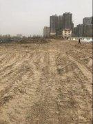 郑州一处绿化项目约1万平方米黄土裸露
