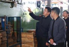 芜湖市市长调研督导中央生态环保督察信访问题整改