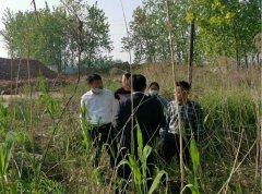 淮安市汛期水质提升专项督察全面进行
