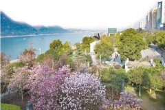 打造长江经济带绿色发展示范城市 三年