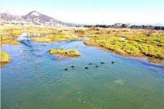 黄柏河:一江碧水惠两岸