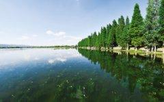 滇池治理绘就云南高质量发展生态底色