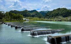 贵州毕节:打造候鸟栖息地 恢复湿地生态功能