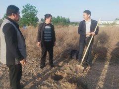 中央第五生态环境保护督察组向河南省反馈督