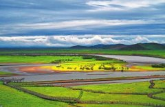 推动黄河流域生态保护和高质量发展 若