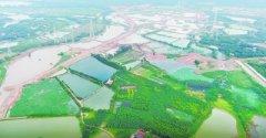 集山水林田湖于一体 武汉市首条城市生态大