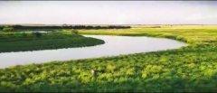 发现中国生态之美首部电影《等儿的湿地》在哈尔滨首映
