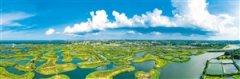 海口江东新区迈雅河区域生态修复项目一期完工