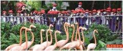 广东将构建以国家公园为主体的自然保