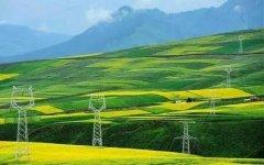 论能源饭碗:发展生物质能 夯实能源安全